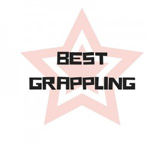 Best Grappling MMA Gloves