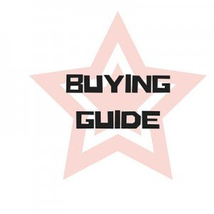 MMA Gloves Buying Guide