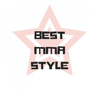 Best Mma Style Shin Guards